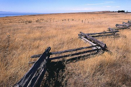Types of Wooden Fences For Your Home